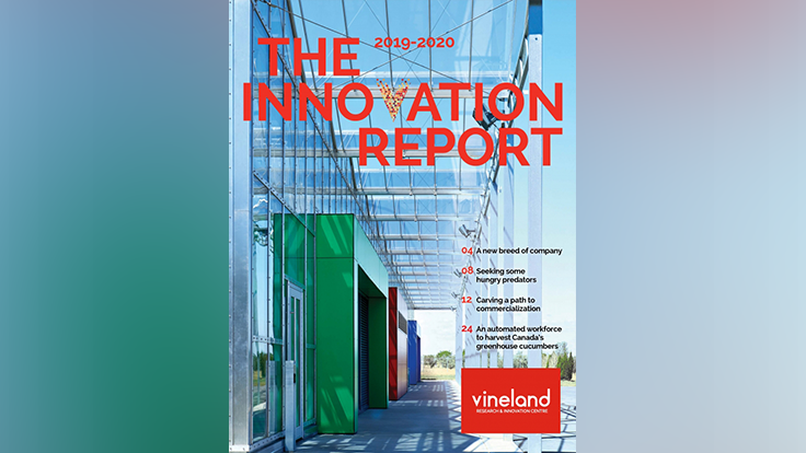 Vineland releases 2019-20 Innovation Report
