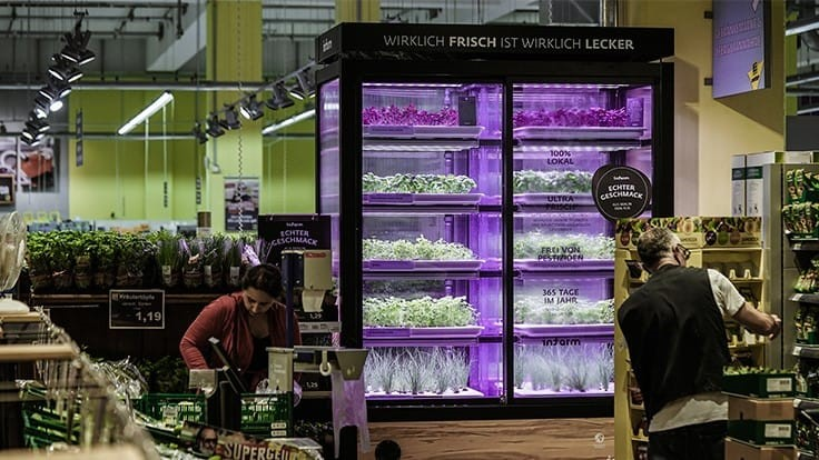 Kroger partners with Europe's Infarm to offer in-store living produce farms