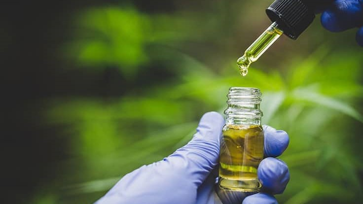 UCLA's Cannabis Research Initiative Awarded First Grant for Clinical Study from NIH