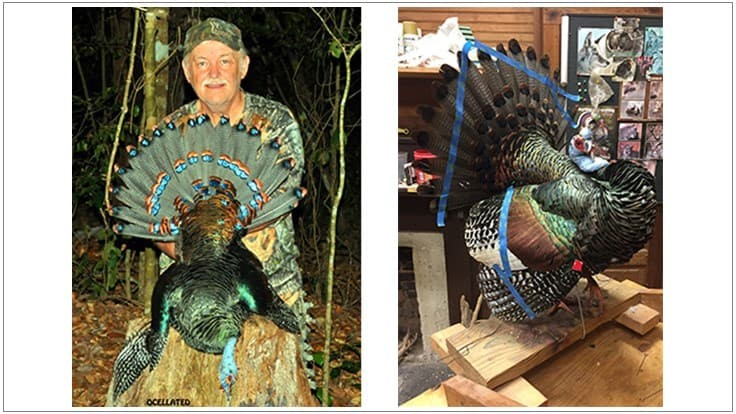 Dennis Judy Captured Turkey Hunting World Slam