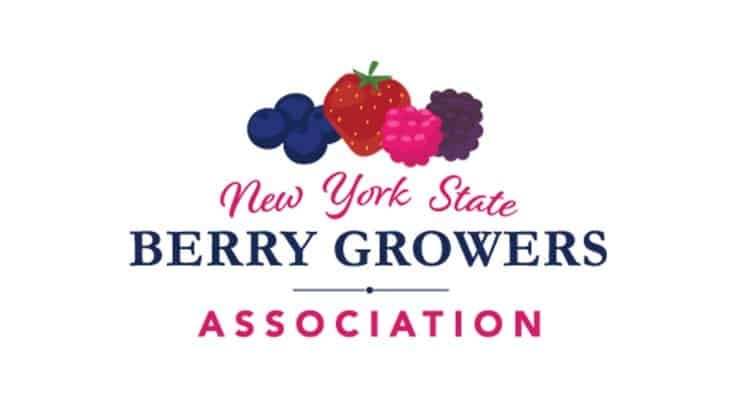 New York State Berry Growers Association and Cornell Cooperative Extension to host Strawberry Substrate Workshop