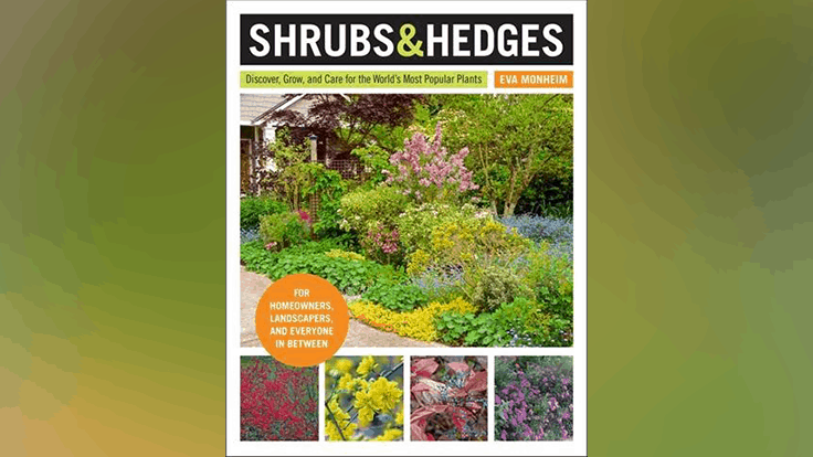 """Shrubs & Hedges"" book hits shelves on March 3rd"