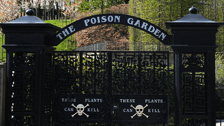 Do you have what it takes to manage the world's deadliest garden?