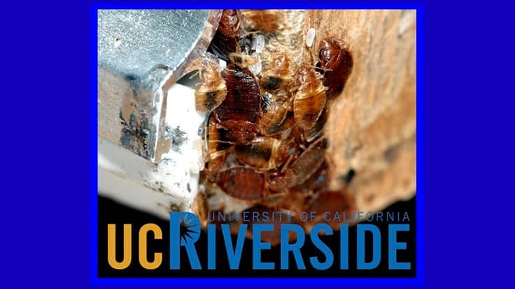 UC-Riverside Pest Conference Scheduled for March 25