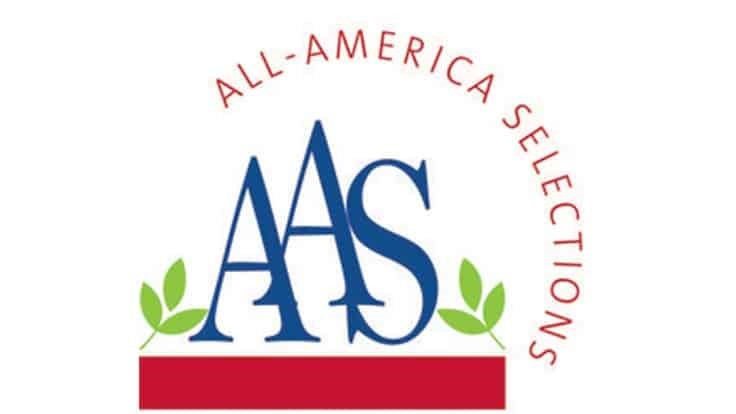 All-America Selections announces recipients of AAS Winner Award