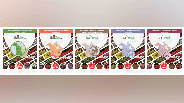 Ball Seed releases new landscape varieties guide for growers