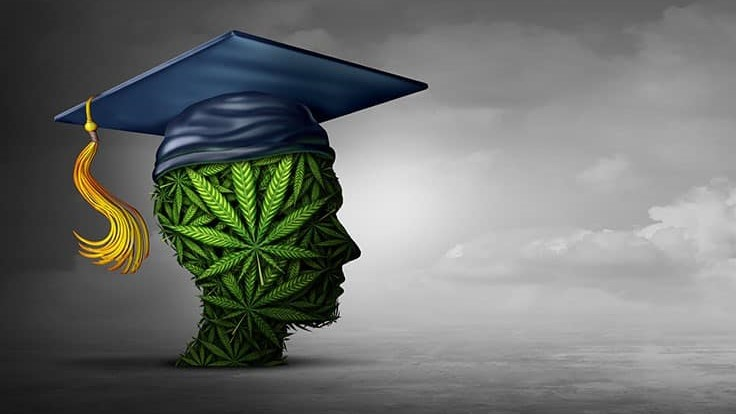 Colorado State University Announces New Degree in Cannabis Science