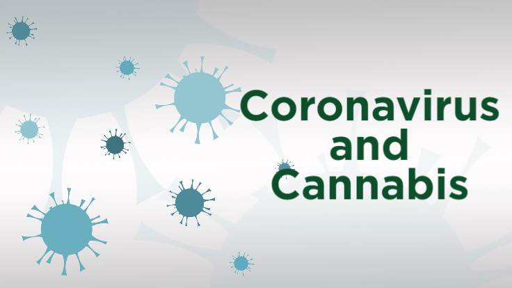 Coronavirus Puts Pressure on the Cannabis Supply Chain