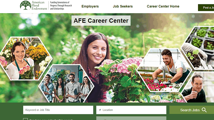 AFE launches new Career Center