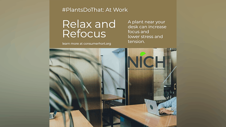 NICH spreads the #PlantsDoThat word on social media