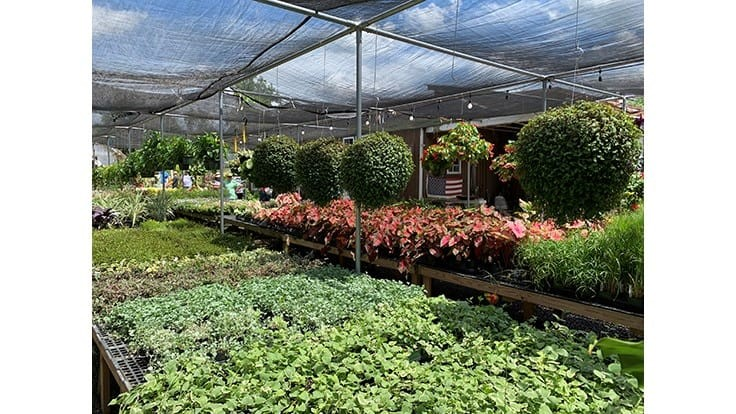 Many garden centers, greenhouses and nurseries deemed 'essential' businesses