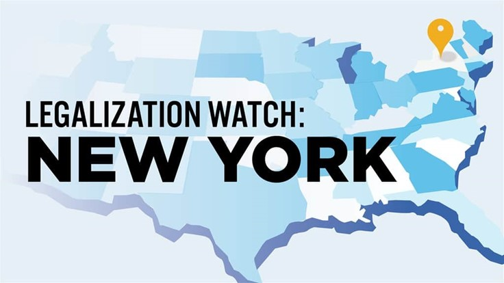 New York Governor's Adult-Use Cannabis Legalization Proposal Cut from State Budget: Legalization Watch