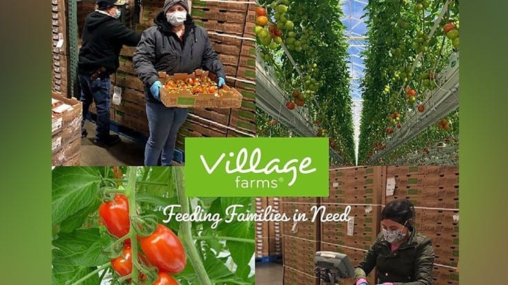 Village Farms donates to food banks and pantries in Texas