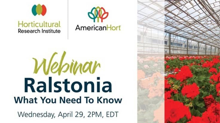HRI hosting Ralstonia webinar on April 29