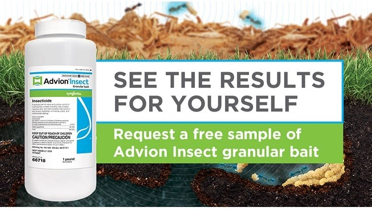 Syngenta Launches Advion Insect Granular Bait