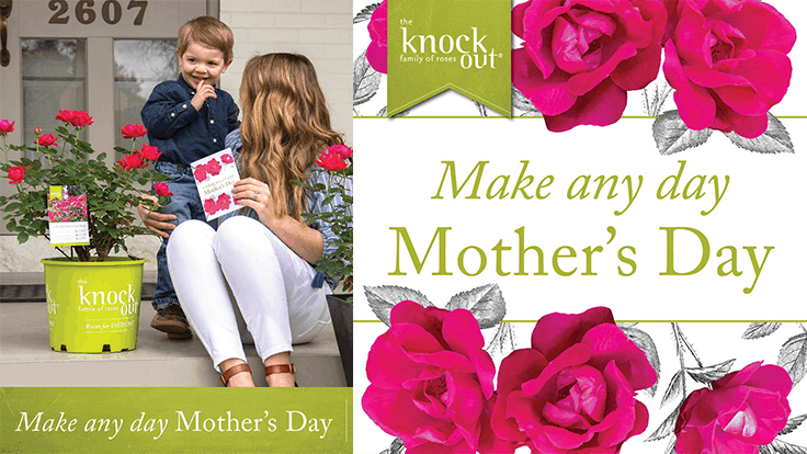 "Star Roses and Plants launches ""Make Any Day Mother's Day"" Campaign"