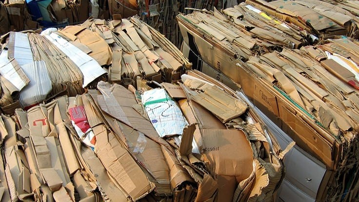 Paper recycling rate at 66.2 percent in 2019