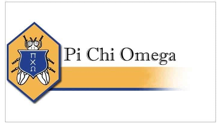 Pi Chi Omega Awards Scholarships for 2020