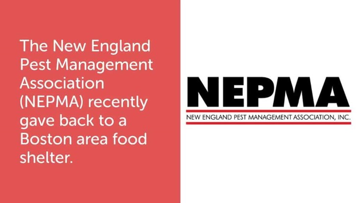 Video: NEPMA Donates Food, Money, Rodent Services to Boston Food Pantry