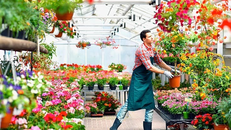 Greenhouse Management Business News