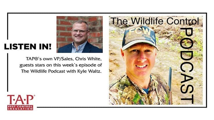 Insulation Services Featured on the Wildlife Control Podcast