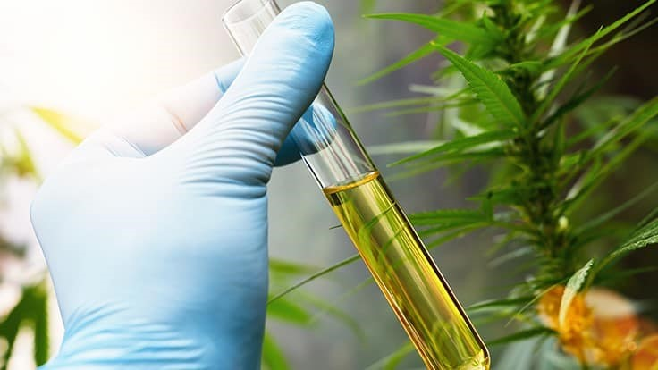 Anticipated FDA Document Does Little to Clarify Consumer CBD Product Regulations