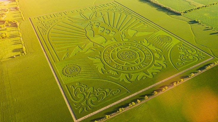 Charlotte's Web Unveils Massive Land Art for its 'Trust the Earth' Campaign