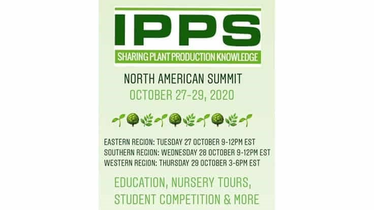 IPPS plans first North American Summit