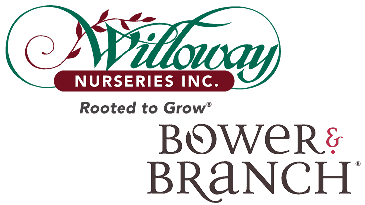 Willoway Nurseries joins forces with Bower & Branch