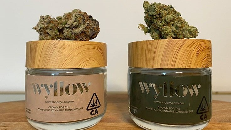 Wyllow Launches Premium Flower Brand Based on Inclusivity and Affordability