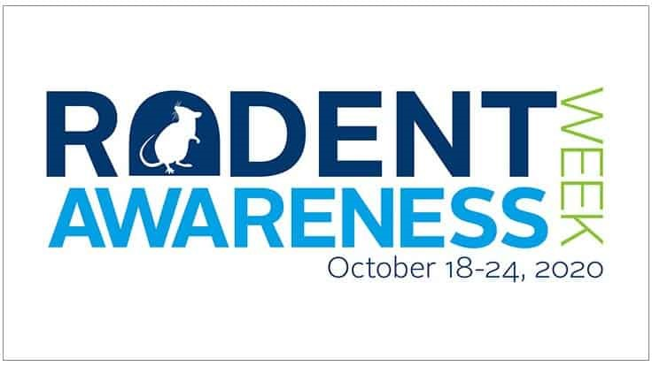 PMPs Encouraged to Participate in 2020 Rodent Awareness Week