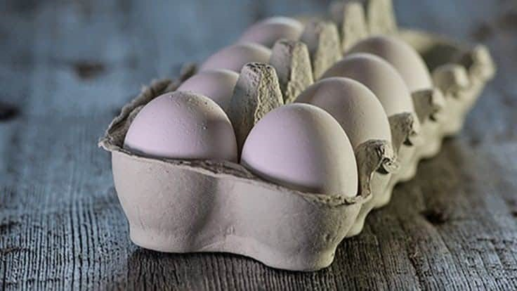 USDA Announces Changes to Egg Products Inspection