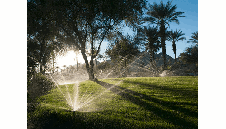Watering intelligently