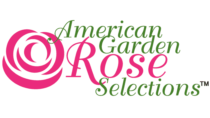 American Garden Rose Selections announces 2021 winners
