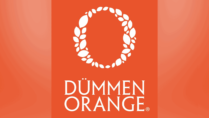 Dümmen Orange consolidates its mum unrooted cutting production