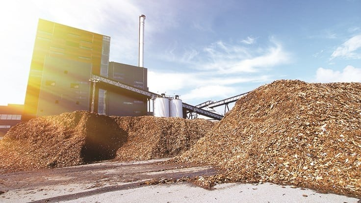Ecowaste's investment in wood processing line creates market for C&D materials
