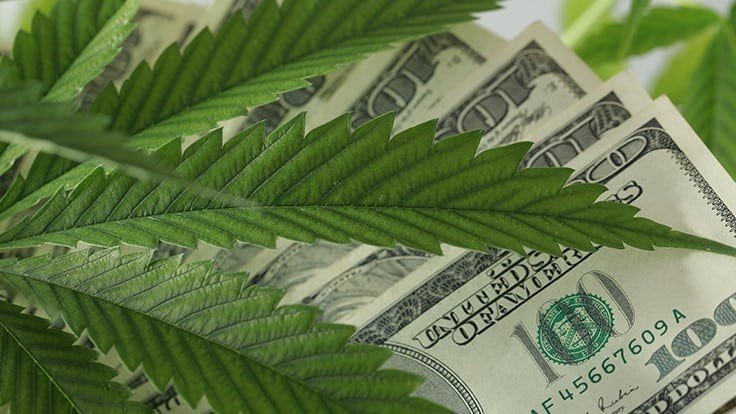 Intrinsic Capital Partners Raises $102M for Cannabis and Hemp-Related Investment