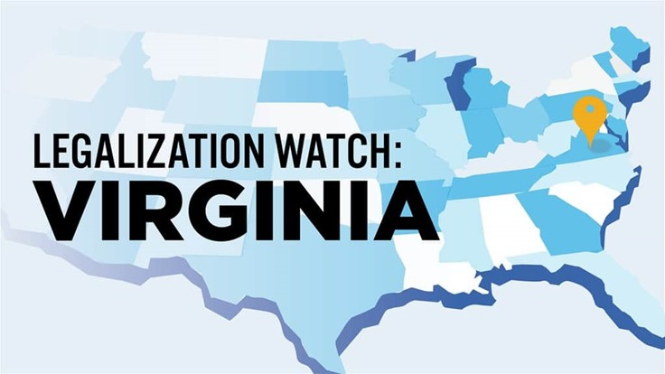Virginia Medical Cannabis Coalition Hopes State Builds on Existing Medical Program to Launch Adult-Use Market: Legalization Watch