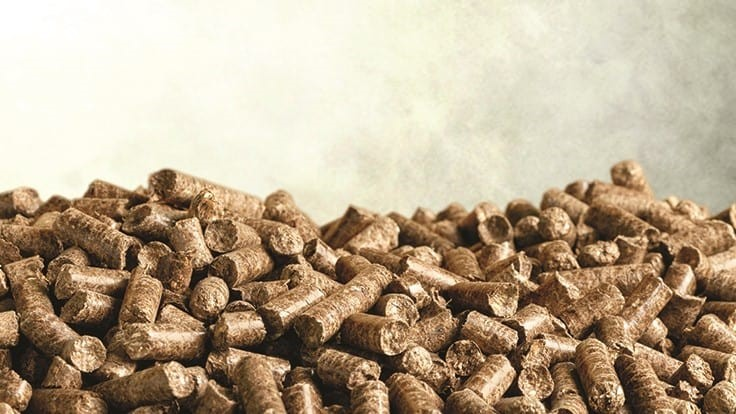 How Red Rock Biofuels aims to turn woody biomass waste into renewable jet fuel