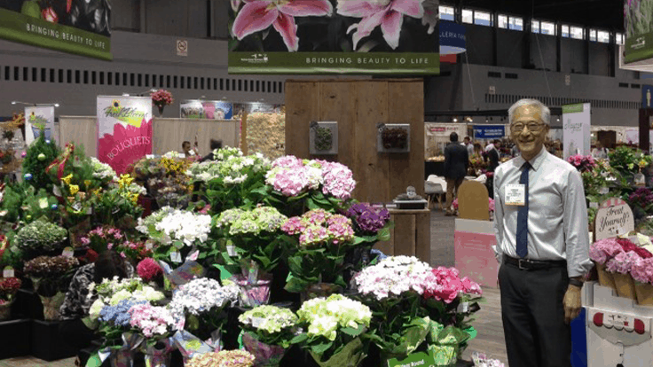 Syngenta Flowers acquires hydrangea genetics from Bay City Flower, Co.