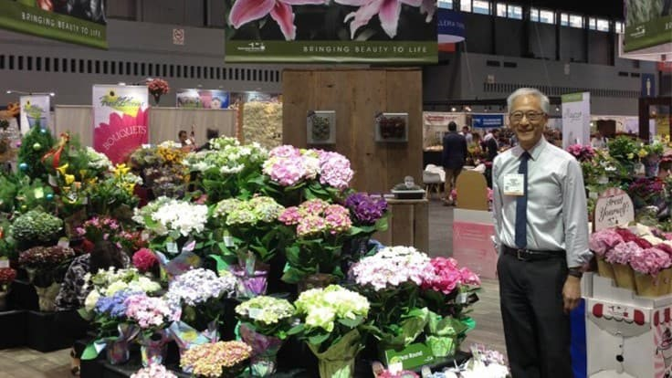 Syngenta Flowers acquires hydrangea genetics from Bay City Flower Co.