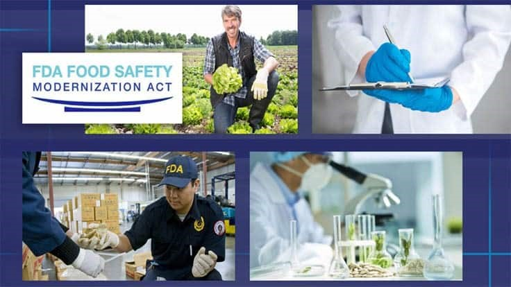 FDA's Food Safety Modernization Act is 10 Years Old