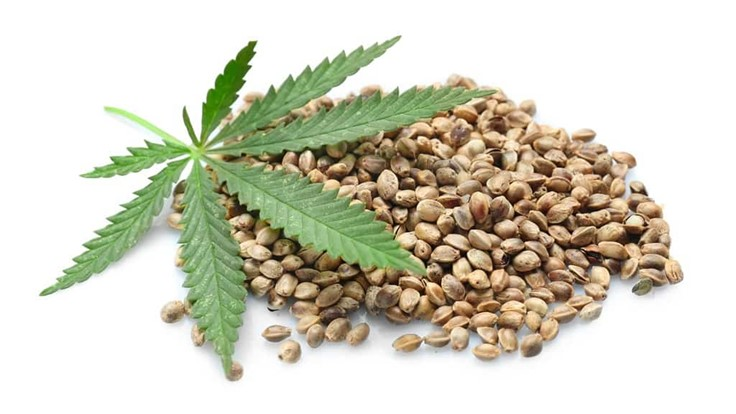 Indiana Agency Warns of Unreputable Hempseed Vendors Nationwide