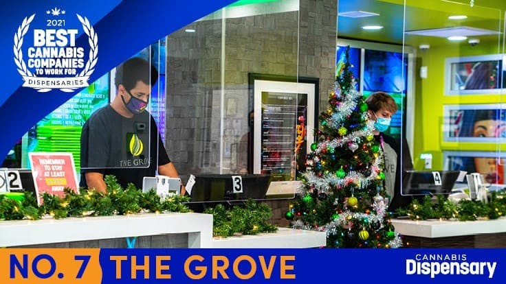 No. 7 Best Cannabis Companies to Work For - Dispensaries: The Grove Pivots Together