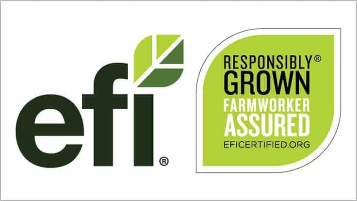 EFI Relaunches Responsible Recruitment Scorecard