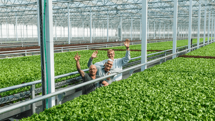 Little Leaf Farms raises $90 million