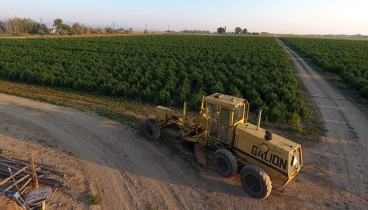 Santa Fe Farms Acquires High Grade Hemp Seed to Further Develop Its 'Hemp Ecosystem Growth Plan'