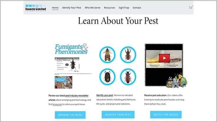 Insects Limited Launches New Website