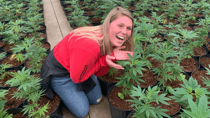 Hemp Introduction Course at a Missouri University Opens Door to Growing Industry