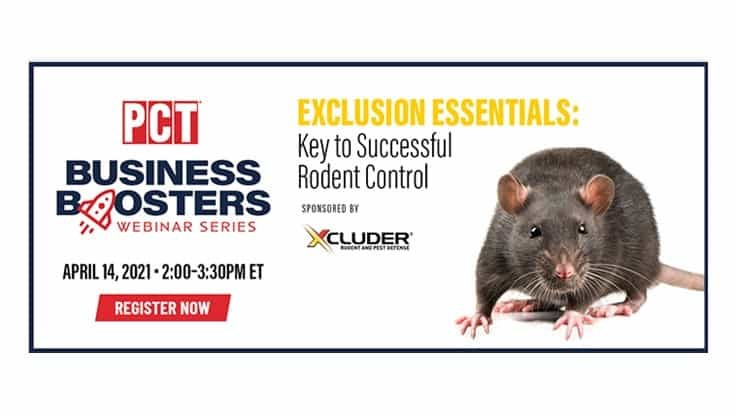 Reminder: Rodent Exclusion Business Booster Webinar is Wednesday